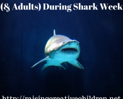 Music For Kids (& Adults) During Shark Week
